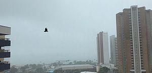 Fortaleza amanhece com chuva e ventania e bairros registram queda de energia