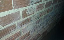 Sal em parede da residência do morador José Honório de Omena