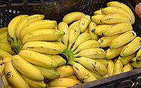 Oferta de banana cai 15% e preço sobe 20% no Ceará
