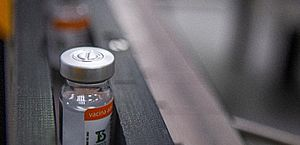 Saúde vai receber e entregar lotes semanais da vacina do Butantan em março; veja cronograma