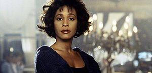 Na trama, a popstar Rachel Marron (Whitney Houston) é ameaçada de morte e contrata Frank Farmer (Kevin Costner), ex-agente do Serviço Secreto como segurança pessoal.