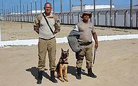 Cães ajudam a manter rotina de segurança das unidades prisionais de Alagoas