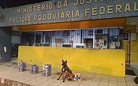 Com a atuação do cão farejador, o Logam, a droga foi encontrada na cabine da carreta