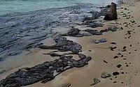 Manchas encontradas na praia de Tamandaré