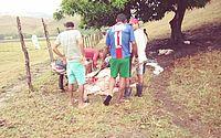 Grupo de pessoas de Santana do Mundaú tenta aproveitar carne de bois mortos por raio