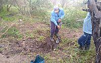 Em Olivença, água era desviada para abastecer clandestinamente barreiros e caminhões-pipa