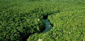 Projeto permite derrubada de vegetação nativa para construção de barragens para irrigação