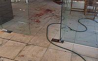 Criança é atacada no rosto por pitbull em restaurante no Grande Recife