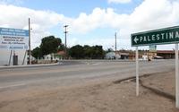 Mortes por Covid-19 em Alagoas equivalem à população da cidade de Palestina