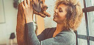 Quando o cão é mais que um pet; conheça benefícios da relação com animal