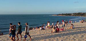 Dezenas de queimaduras de águas-vivas em banhistas são registradas no Ceará