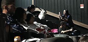 CinePets: sessão de O Homem Aranha é invadida por cães e muita fofura em Maceió