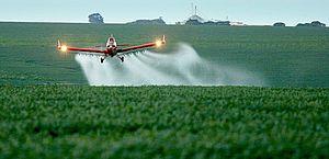 30% dos ingredientes de agrotóxicos liberados neste ano são barrados na UE