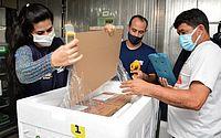 Alagoas recebeu mais 17 mil doses de Coronavac nessa sexta-feira