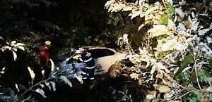 Acidente na AL-101 Norte deixou motorista ferido