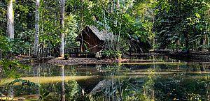 Jardim Botânico do Rio terá visita noturna a partir de outubro
