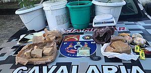 Apreensão de quatro pés de maconha e mais de 2 kg de crack, em Serraria