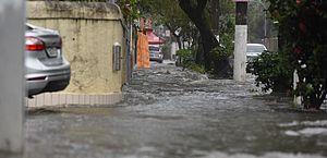 No primeiro dia de primavera, a chuva veio forma intensa, com alagamentos e quedas de árvores no Rio de Janeiro