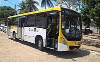 Linhas de ônibus do Pinheiro terão itinerário modificado nesta terça