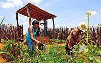 Alagoas foi o Estado do Nordeste menos afetado pela crise econômica, apontam IBGE e Seplag