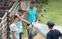 Caíque, João e Rafael se despendem dos animais em 'A Fazenda'
