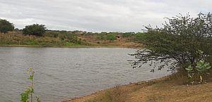 Homem morre vítima de afogamento após mergulho em barragem no Agreste