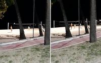 Vídeo: grupo é flagrado jogando futevôlei na areia da Praia de Pajuçara