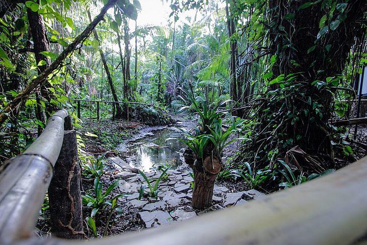 O Parque do Horto é nova opção de lazer em Maceió