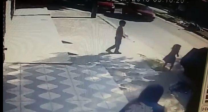Crianças foram abandonadas na rua por assaltante