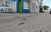 Pitbulls matam cão de idosa; vídeo mostra ataque em Salvador