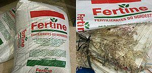 Polícia desarticula grupo envolvido em desviar cargas de fertilizantes no Porto de Maceió