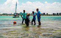 Piscinas naturais recebem nova sinalização para evitar danos aos corais
