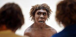 Inversão dos polos magnéticos da Terra pode ter causado extinção do neandertal